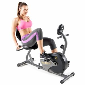 recumbent bike for short person