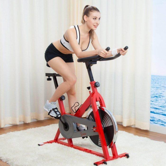 best spin bike under $200